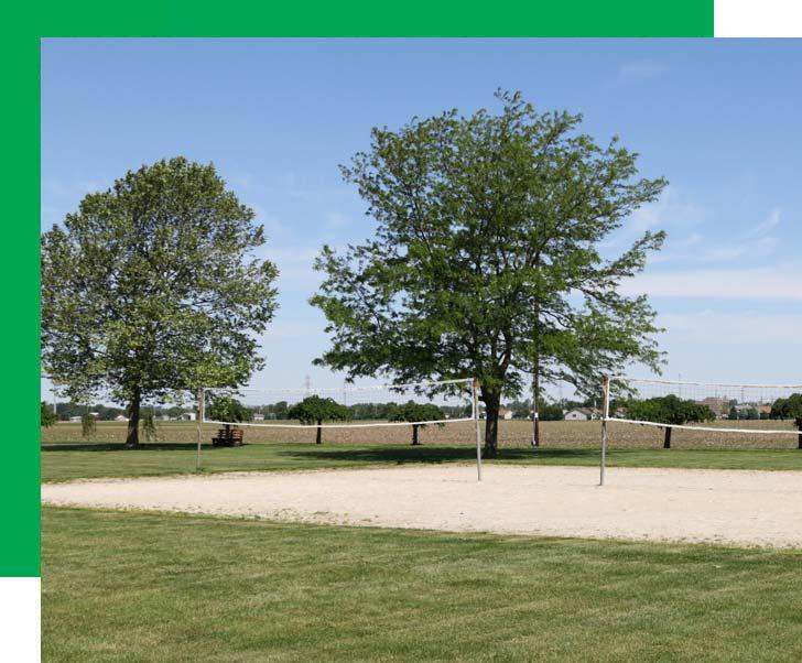 Ballville Township Conner Park Tree